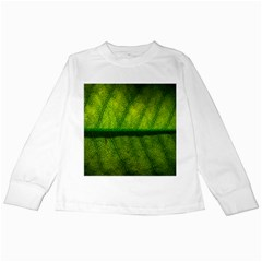Leaf Nature Green The Leaves Kids Long Sleeve T Shirts