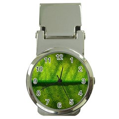 Leaf Nature Green The Leaves Money Clip Watches