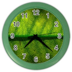 Leaf Nature Green The Leaves Color Wall Clocks