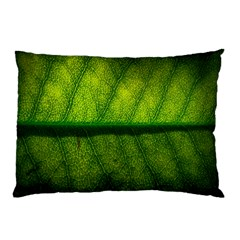 Leaf Nature Green The Leaves Pillow Case (two Sides)