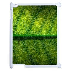 Leaf Nature Green The Leaves Apple Ipad 2 Case (white)