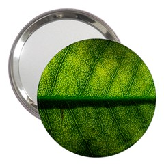 Leaf Nature Green The Leaves 3  Handbag Mirrors