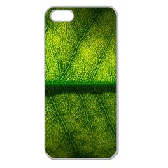 Leaf Nature Green The Leaves Apple Seamless Iphone 5 Case (clear)