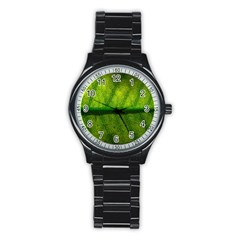 Leaf Nature Green The Leaves Stainless Steel Round Watch