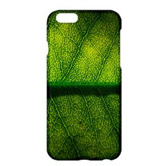 Leaf Nature Green The Leaves Apple Iphone 6 Plus/6s Plus Hardshell Case