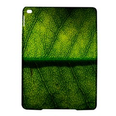 Leaf Nature Green The Leaves Ipad Air 2 Hardshell Cases by Nexatart