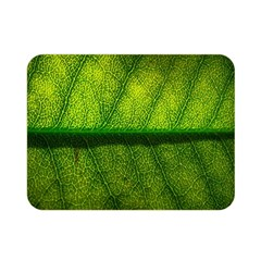 Leaf Nature Green The Leaves Double Sided Flano Blanket (mini)