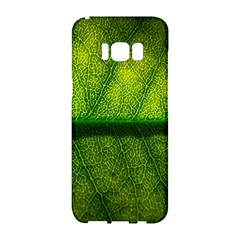 Leaf Nature Green The Leaves Samsung Galaxy S8 Hardshell Case