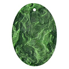 Geological Surface Background Oval Ornament (two Sides)