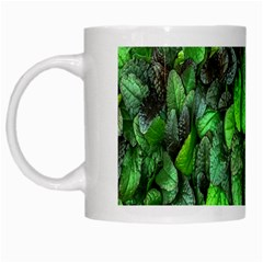 The Leaves Plants Hwalyeob Nature White Mugs