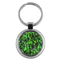 The Leaves Plants Hwalyeob Nature Key Chains (round)  by Nexatart