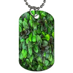 The Leaves Plants Hwalyeob Nature Dog Tag (two Sides)