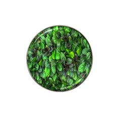 The Leaves Plants Hwalyeob Nature Hat Clip Ball Marker (4 Pack) by Nexatart