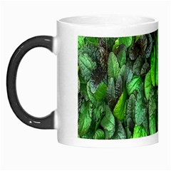 The Leaves Plants Hwalyeob Nature Morph Mugs