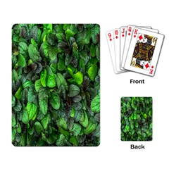 The Leaves Plants Hwalyeob Nature Playing Card
