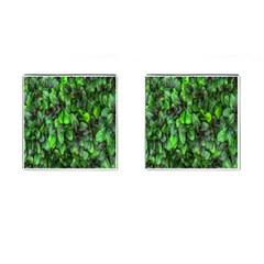 The Leaves Plants Hwalyeob Nature Cufflinks (square)