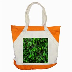 The Leaves Plants Hwalyeob Nature Accent Tote Bag