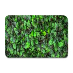 The Leaves Plants Hwalyeob Nature Plate Mats by Nexatart