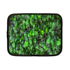 The Leaves Plants Hwalyeob Nature Netbook Case (small)  by Nexatart