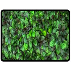 The Leaves Plants Hwalyeob Nature Fleece Blanket (large)