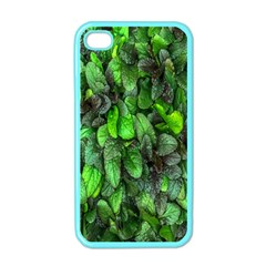 The Leaves Plants Hwalyeob Nature Apple Iphone 4 Case (color)