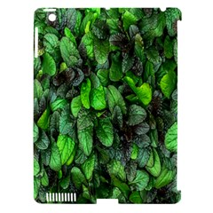 The Leaves Plants Hwalyeob Nature Apple Ipad 3/4 Hardshell Case (compatible With Smart Cover)
