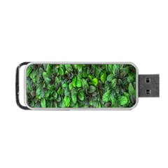 The Leaves Plants Hwalyeob Nature Portable Usb Flash (one Side) by Nexatart