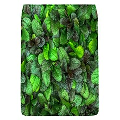 The Leaves Plants Hwalyeob Nature Flap Covers (s)
