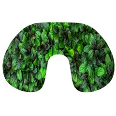 The Leaves Plants Hwalyeob Nature Travel Neck Pillows
