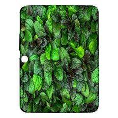 The Leaves Plants Hwalyeob Nature Samsung Galaxy Tab 3 (10 1 ) P5200 Hardshell Case