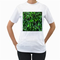 The Leaves Plants Hwalyeob Nature Women s T Shirt (white)