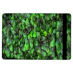The Leaves Plants Hwalyeob Nature Ipad Air Flip