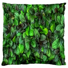 The Leaves Plants Hwalyeob Nature Standard Flano Cushion Case (one Side)