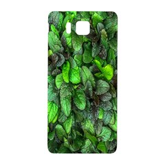 The Leaves Plants Hwalyeob Nature Samsung Galaxy Alpha Hardshell Back Case by Nexatart
