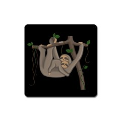 Cute Sloth Square Magnet by Valentinaart