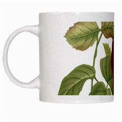Rose 1077964 1280 White Mugs by vintage2030