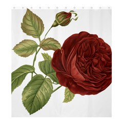 Rose 1077964 1280 Shower Curtain 66  X 72  (large)  by vintage2030