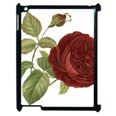 Rose 1077964 1280 Apple Ipad 2 Case (black) by vintage2030