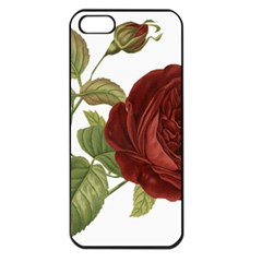 Rose 1077964 1280 Apple Iphone 5 Seamless Case (black) by vintage2030