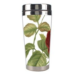 Rose 1077964 1280 Stainless Steel Travel Tumblers by vintage2030