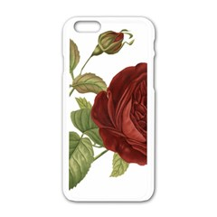 Rose 1077964 1280 Apple Iphone 6/6s White Enamel Case by vintage2030