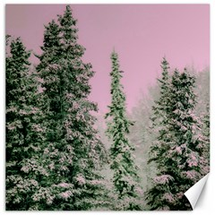 Winter Trees Pink Canvas 20  X 20   by vintage2030