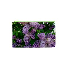 Lilacs 2 Cosmetic Bag (xs) by dawnsiegler