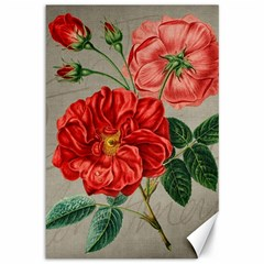 Flower Floral Background Red Rose Canvas 12  X 18