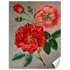Flower Floral Background Red Rose Canvas 18  X 24