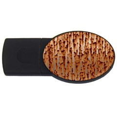 Stainless Rusty Metal Iron Old Usb Flash Drive Oval (2 Gb)