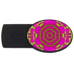 Fern Forest Star Mandala Decorative Usb Flash Drive Oval (4 Gb) by pepitasart
