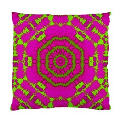 Fern Forest Star Mandala Decorative Standard Cushion Case (two Sides) by pepitasart