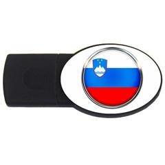 Slovenia Flag Mountains Country Usb Flash Drive Oval (2 Gb)