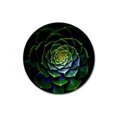 Nature Desktop Flora Color Pattern Magnet 3  (round)